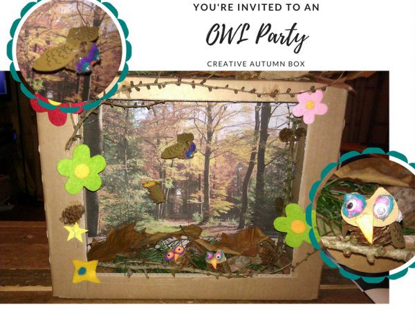 OWL Party box