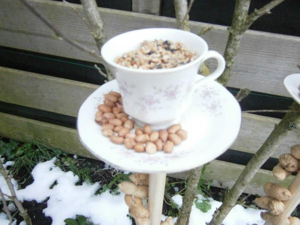 another cup of coffee for the birds